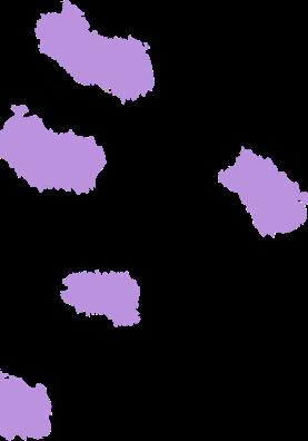 purple pattern bg